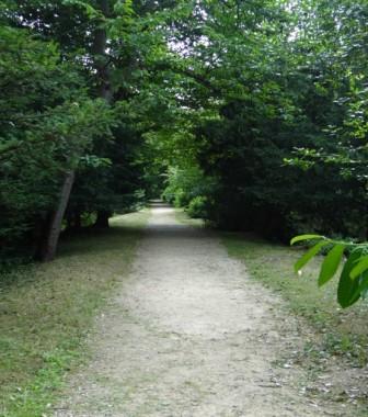 11a path