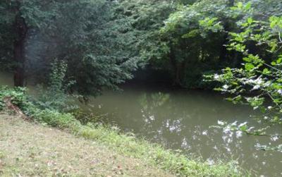 12a river.png