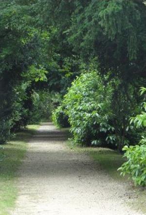 14a path