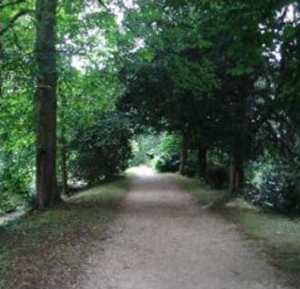 17a path