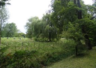 18a field