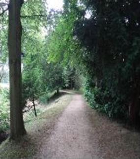 19a path