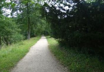 20a path
