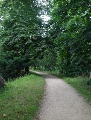22b path