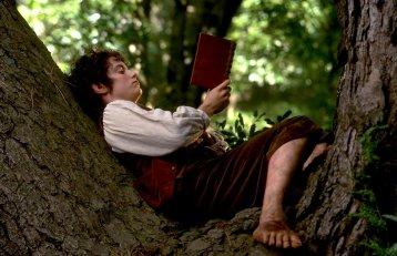 frodo book
